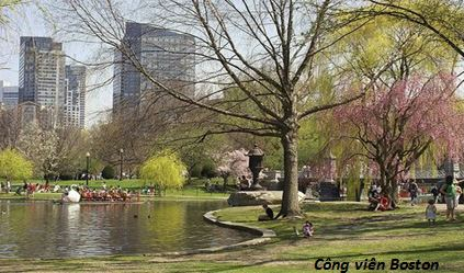 Boston_Spring