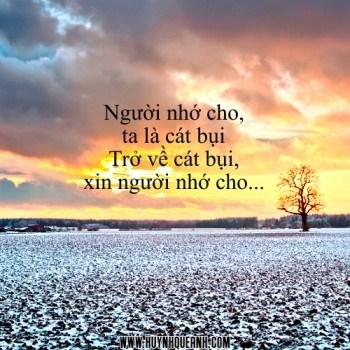 cat_bui