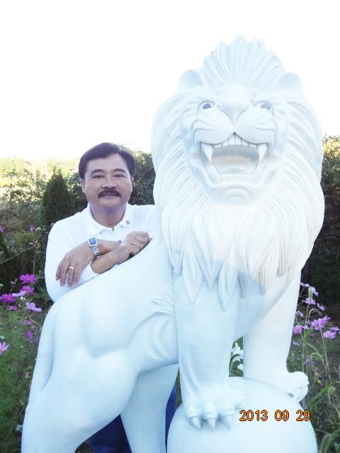 T_lion