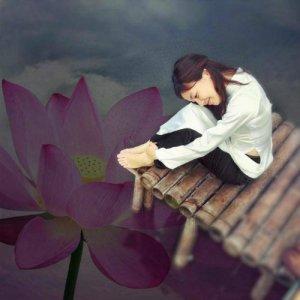 to_vuong