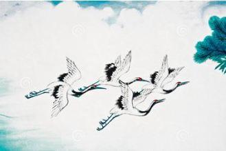 crane-bird-flying
