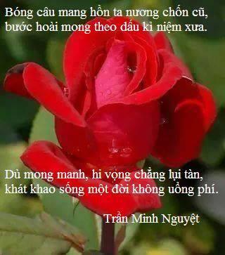 Tieng_long